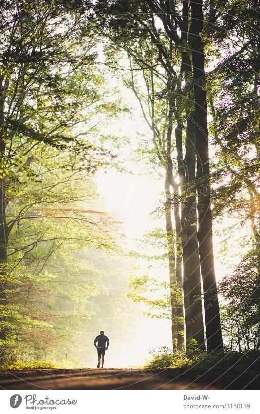 Morgenstund... Mensch Natur Gesunde Ernährung Mann Landschaft ruhig Wald Ferne Gesundheit Erwachsene Leben Herbst Umwelt Senior Frühling Zufriedenheit