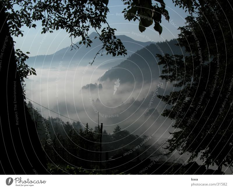 bodennebel Herbst Berge u. Gebirge Stimmung Bodennebel Bundesland Niederösterreich