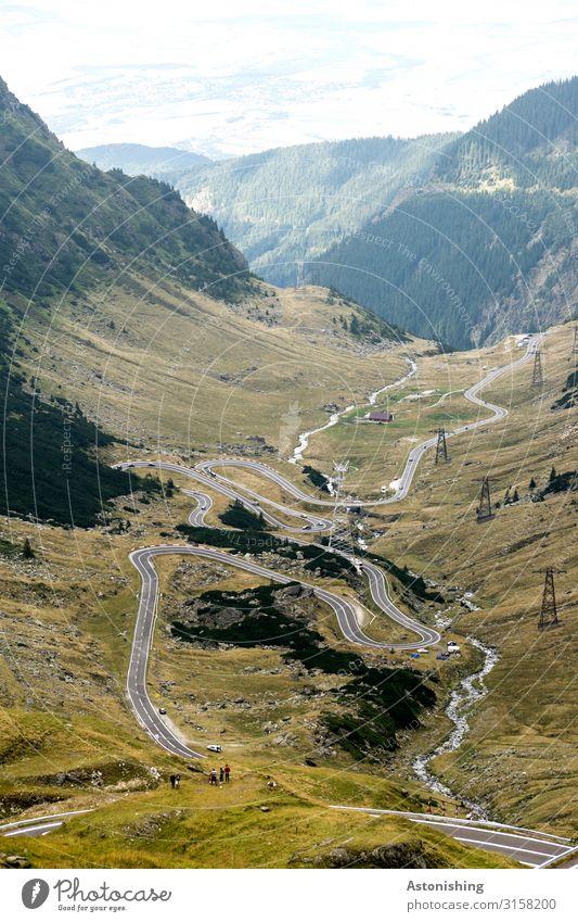 Transfagarasan 4 Umwelt Natur Landschaft Pflanze Luft Himmel Sommer Wetter Baum Blume Sträucher Berge u. Gebirge Südkarpaten Karpaten Schlucht Rumänien Verkehr