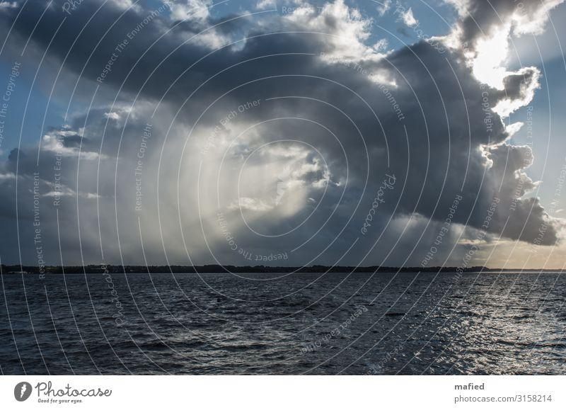 Sturm kommt auf Natur Landschaft Luft Wasser Himmel Wolken Sonne Herbst Schönes Wetter Wellen Küste Fjord Ostsee Schlei blau braun gelb grau weiß Umwelt