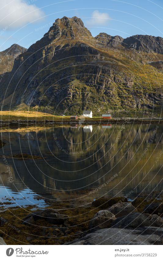 Naturverbunden Ferien & Urlaub & Reisen Ferne Freiheit Umwelt Landschaft Herbst Schönes Wetter Felsen Berge u. Gebirge Fjord Norwegen Skandinavien Lofoten Haus