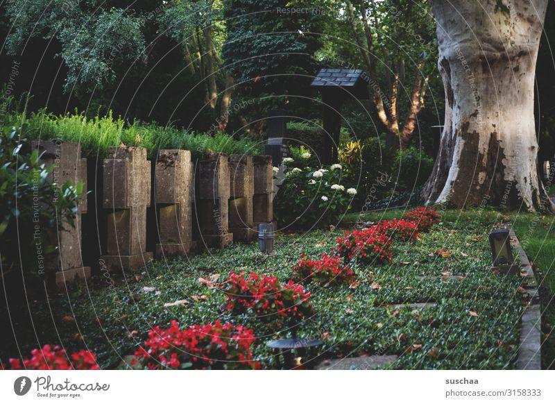 in reih' und glied | weltschmerz Friedhof Grab Grabstein Christliches Kreuz Symbole & Metaphern Christentum Religion & Glaube Tradition Beerdigung