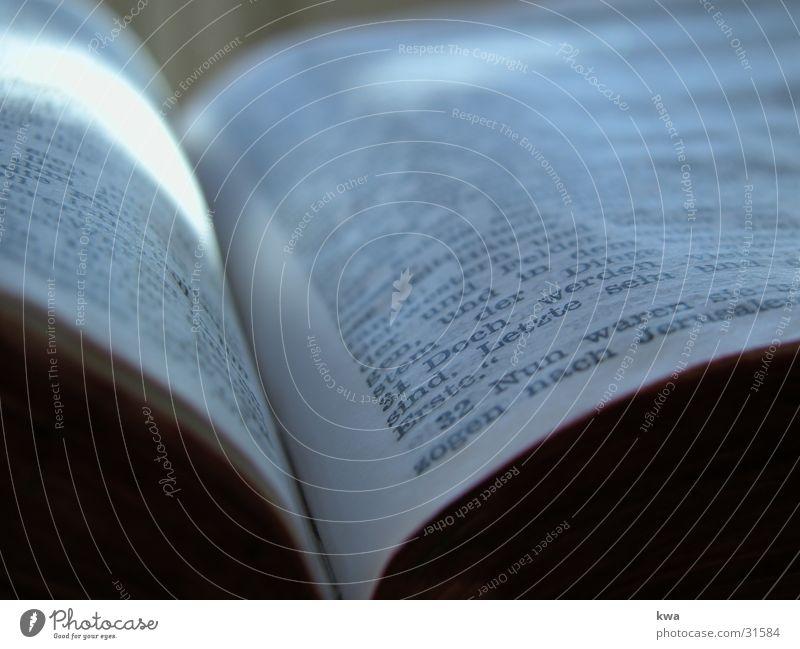 bibel Bibel Buch Dinge