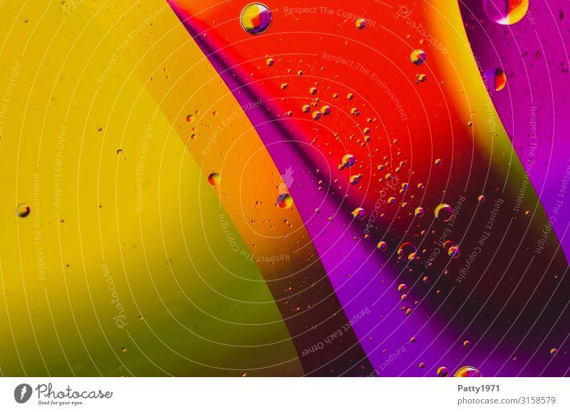 Öl abstrakt Stil Design exotisch Wellness harmonisch Flüssigkeit Muster Strukturen & Formen Blase rund mehrfarbig Farbfoto Makroaufnahme Menschenleer