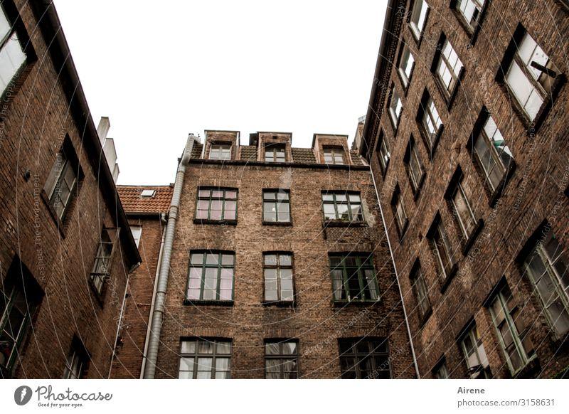 Alt-Hamburg   UT Hamburg alt Stadt Haus Fenster Zusammensein braun Fassade Häusliches Leben authentisch hoch Wohnhaus Altstadt Stadtzentrum Wachsamkeit
