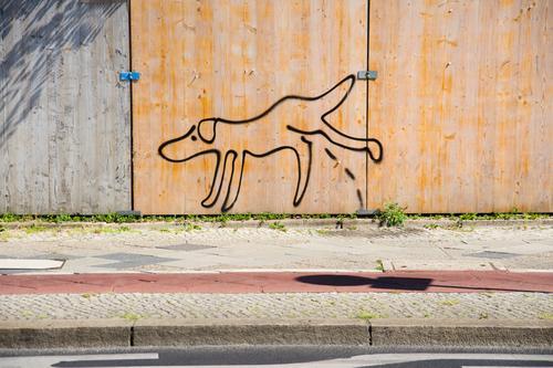 Wildpinkeln Hund Linie Schönes Wetter Beton Bürgersteig Straßenkunst Comic Subkultur Fahrradweg Tiergarten Bauzaun