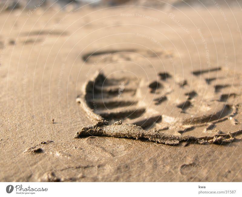 uferlos Küste Spuren