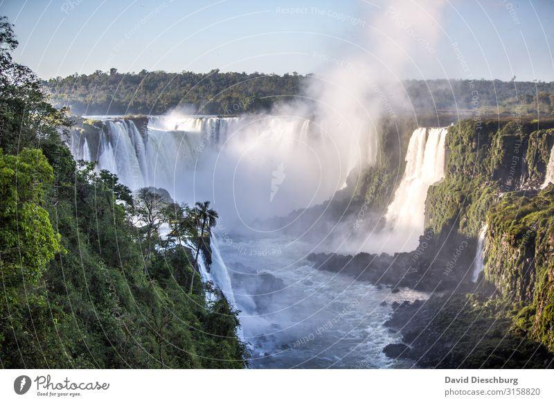 Iguassu Ferien & Urlaub & Reisen Tourismus Ausflug Umwelt Natur Landschaft Pflanze Wolkenloser Himmel Schönes Wetter Wald Urwald Fluss Wasserfall