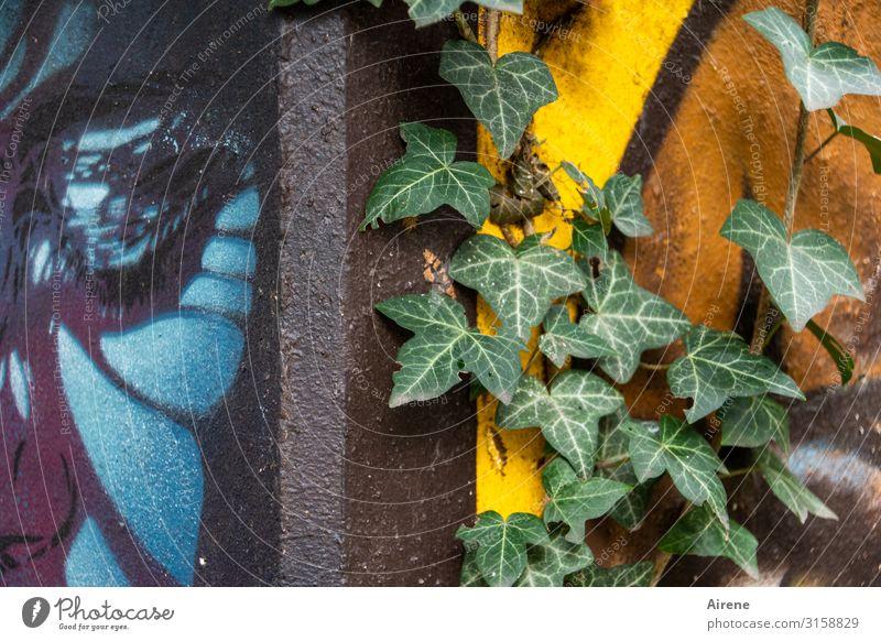 Hoffnung | UT Hamburg Maler Gemälde Graffiti Efeu Fassade Wachstum Fröhlichkeit oben positiv blau mehrfarbig gelb grün Ausdauer einzigartig Farbe Idylle