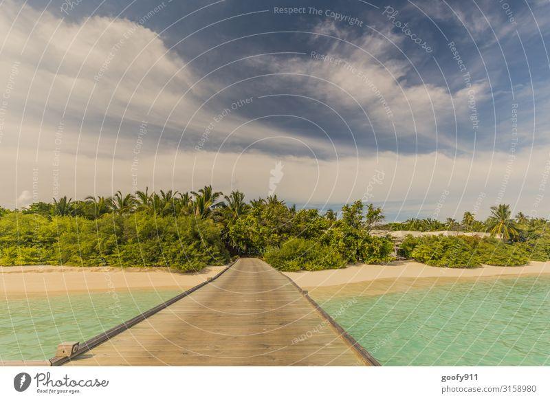 Steg ins Paradies Ferien & Urlaub & Reisen Ausflug Abenteuer Freiheit Sommer Strand Meer Insel Natur Sand Wasser Himmel Wolken Horizont exotisch Palmenstrand
