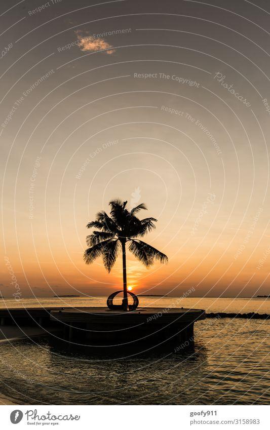 Auf in einen neuen Tag Ferien & Urlaub & Reisen Tourismus Ausflug Abenteuer Ferne Freiheit Sommer Sonne Strand Meer Insel Natur Sand Wasser Himmel