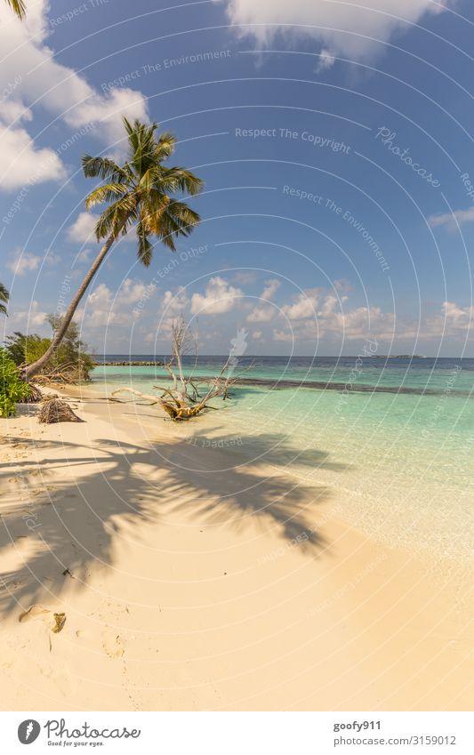 Im Paradies (#500) Ferien & Urlaub & Reisen Tourismus Ausflug Abenteuer Ferne Freiheit Sommer Sonne Sonnenbad Strand Meer Insel Natur Landschaft Wasser Himmel
