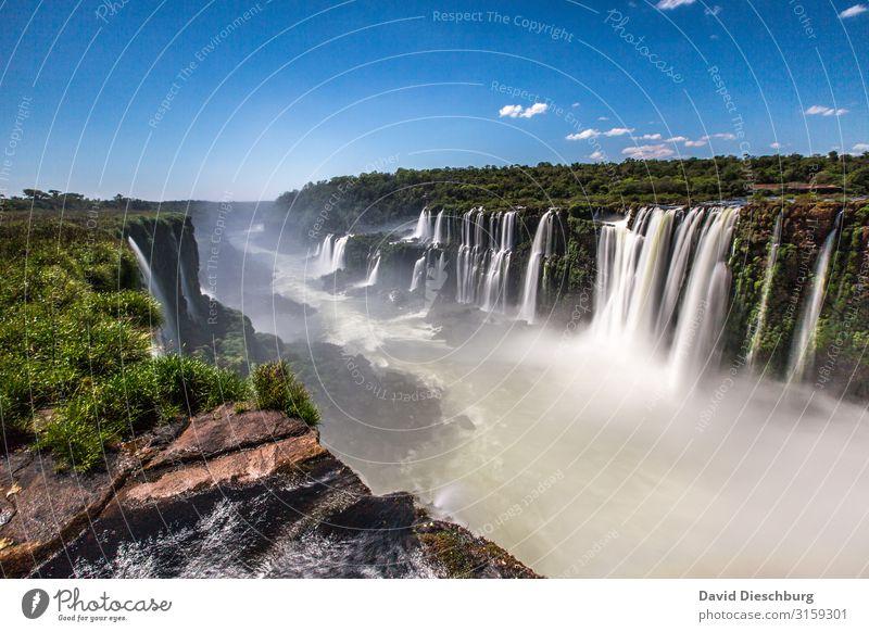 Iguazu Ferien & Urlaub & Reisen Tourismus Abenteuer Sightseeing Sommerurlaub Umwelt Natur Landschaft Pflanze Tier Himmel Wolken Frühling Schönes Wetter Baum