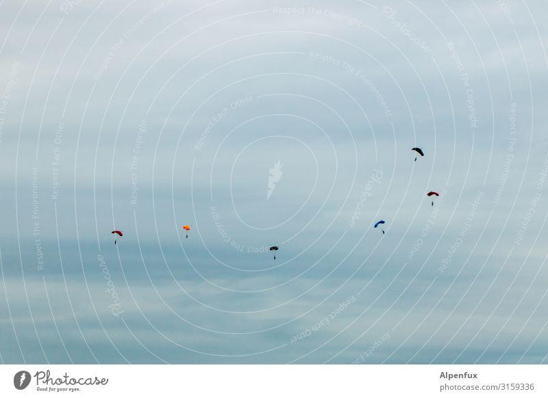 Zugvögel Sport Fallschirmspringen Fallschirmspringer fallen fliegen blau mehrfarbig gelb grün Höhenangst Abenteuer Angst ästhetisch Zufriedenheit elegant