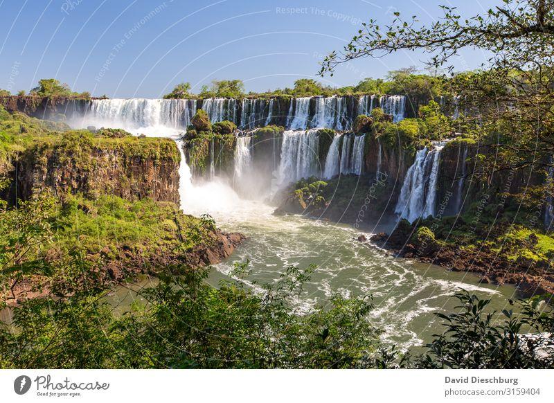 Iguazu Ferien & Urlaub & Reisen Tourismus Abenteuer Expedition Umwelt Natur Landschaft Pflanze Tier Wolkenloser Himmel Schönes Wetter Baum Urwald Wellen
