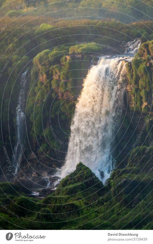Iguazu Ferien & Urlaub & Reisen Tourismus Abenteuer Expedition Umwelt Natur Landschaft Pflanze Tier Wasser Schönes Wetter Urwald Schlucht Wellen Fluss