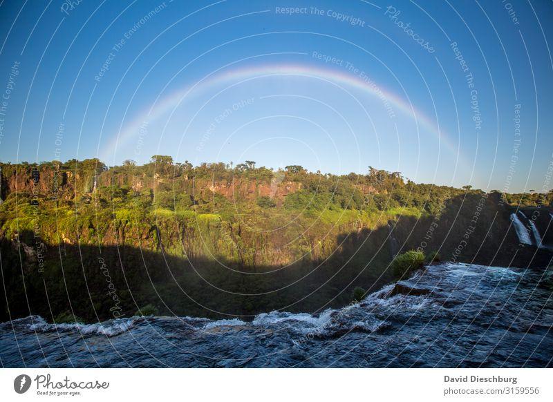 Regenbogen am Iguassu Ferien & Urlaub & Reisen Tourismus Sightseeing Natur Landschaft Wasser Wolkenloser Himmel Frühling Sommer Schönes Wetter Pflanze Baum Wald