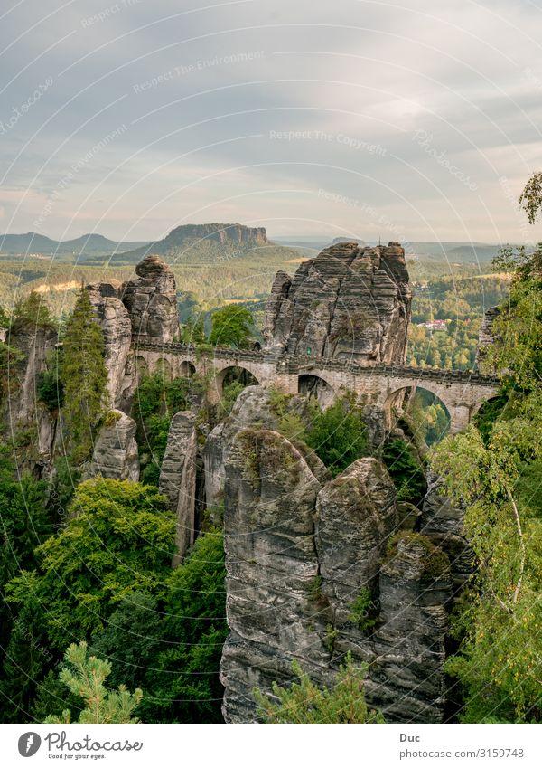 Basteibrücke Freizeit & Hobby Umwelt Natur Landschaft Wolken Sommer Klima Wetter Baum Wald Felsen Berge u. Gebirge Rathen Deutschland Europa Brücke Gebäude