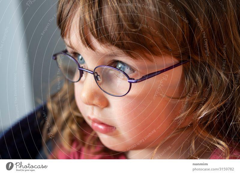 Porträt eines jungen blauäugigen blonden Mädchens mit Brille schön Kind Baby Kindheit Auge Denken klein niedlich Konzentration unschuldig Licht Tochter ernst