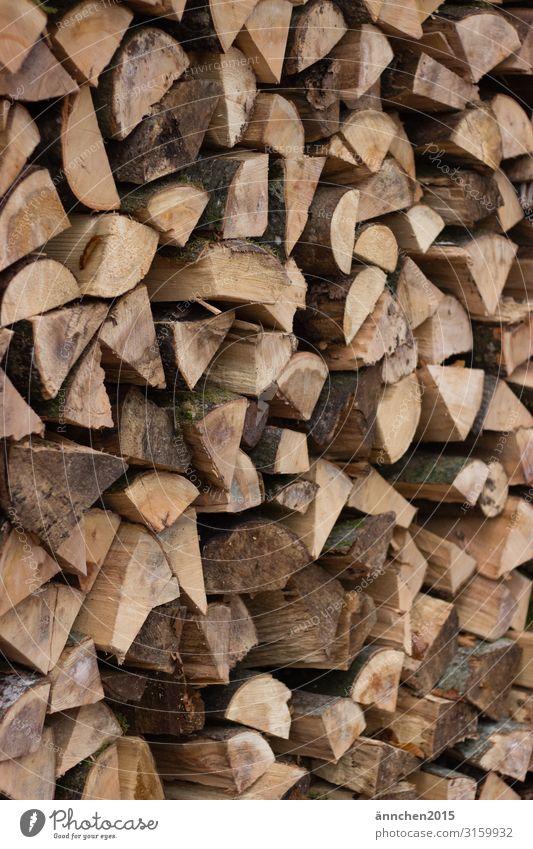 Holz für den Winter Herd & Backofen Ofenheizung Wald Natur Holzstapel Brennholz Außenaufnahme zerkleinern hacken Feuer Kamin braun