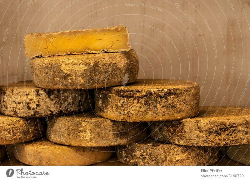 Käse Lebensmittel Essen Frühstück Mittagessen Abendessen Büffet Brunch Picknick Slowfood alt gut Farbfoto Innenaufnahme Menschenleer