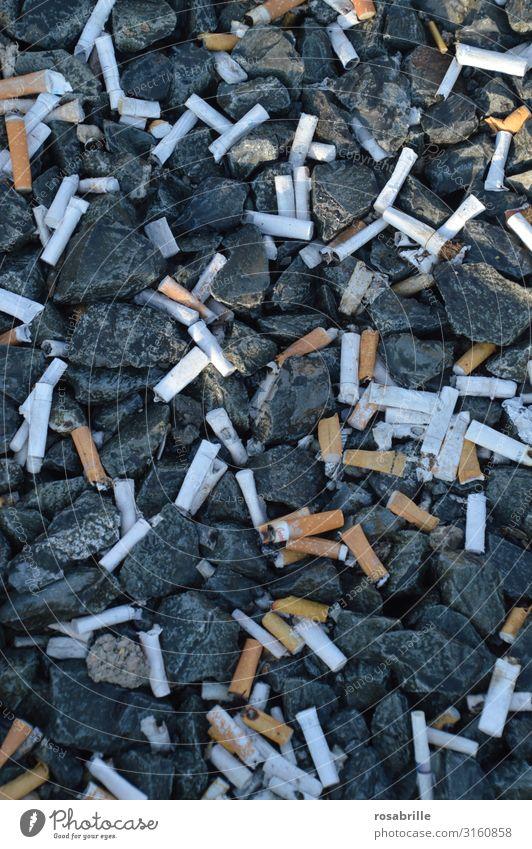 Zigarettenkippen | !Trash! 2019 Reichtum Rauchen Laster Ordnungsliebe Reinlichkeit Sauberkeit egoistisch Drogensucht Dekadenz Umweltverschmutzung Verbote