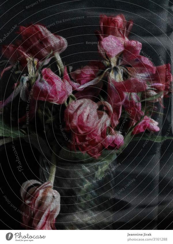 Blumen gehen immer Gemälde Umwelt Natur Tulpe Vase Glas rosa Enttäuschung Erschöpfung Verfall Vergangenheit Vergänglichkeit verlieren verblüht Blumenstrauß Zeit