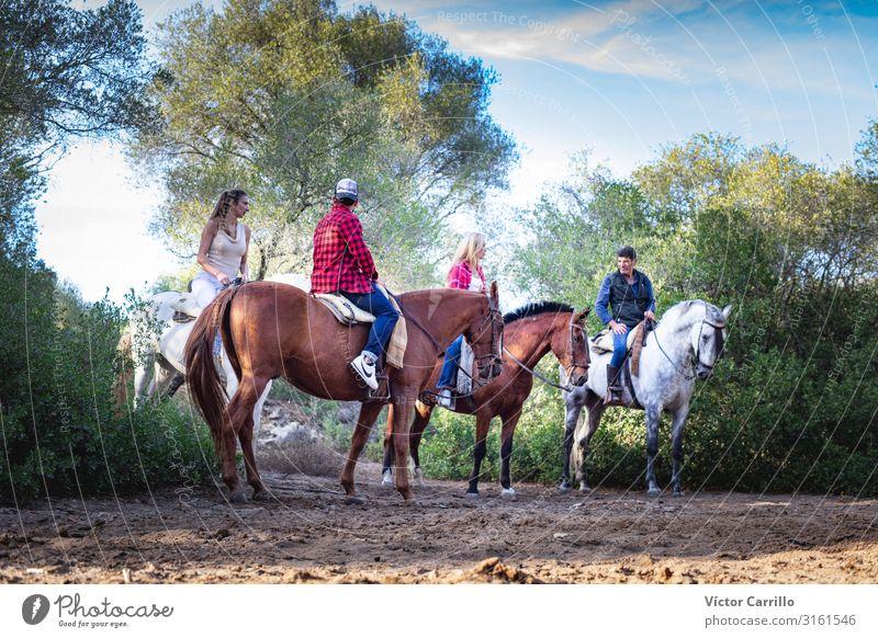 Eine Gruppe von Menschen, die ein Pferd in der Natur reiten. Lifestyle elegant Reiten Junge Frau Jugendliche Junger Mann Erwachsene 4 18-30 Jahre 30-45 Jahre