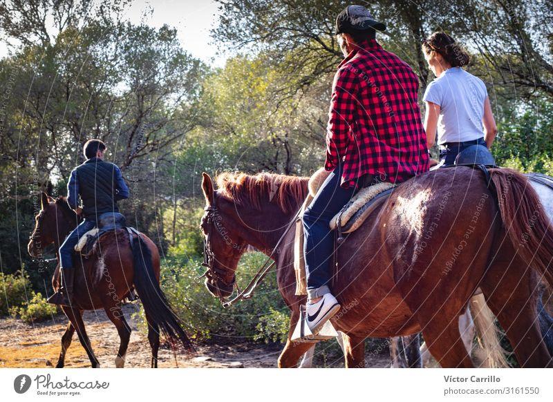 Ein Paar von einem Mann und einer Frau auf einem Pferd. Lifestyle elegant Stil Mensch maskulin feminin Junge Frau Jugendliche Junger Mann Erwachsene