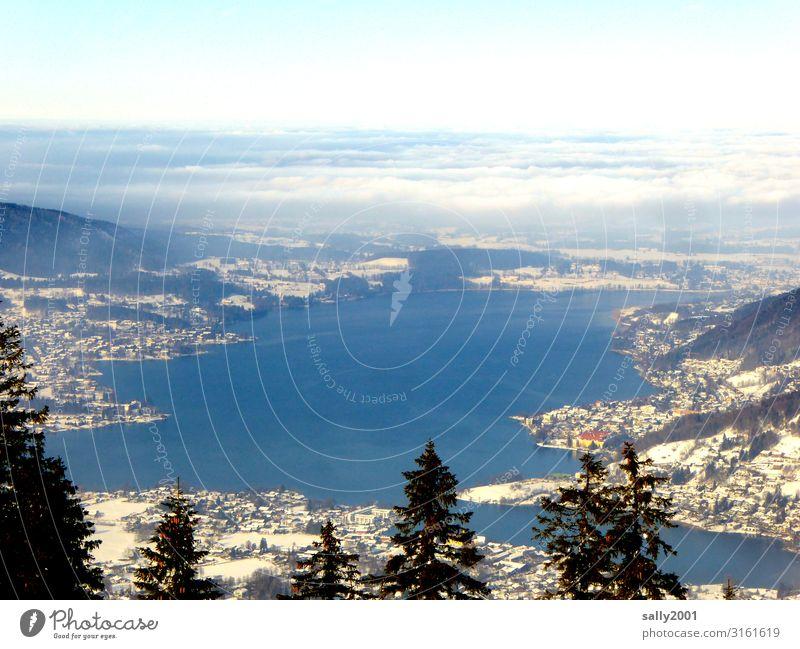 Wochenendausblick... Landschaft Winter Baum Alpen Berge u. Gebirge See Tegernsee Erholung Ferien & Urlaub & Reisen Freiheit Freizeit & Hobby Horizont Ferne
