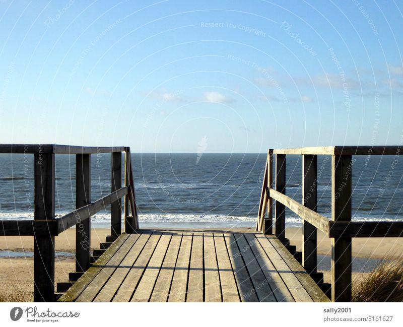 weitsichtig | bis zum Horizont... Himmel Schönes Wetter Wellen Küste Strand Nordsee Meer Treppe Brückengeländer Geländer Holz Ferne frei maritim Zufriedenheit