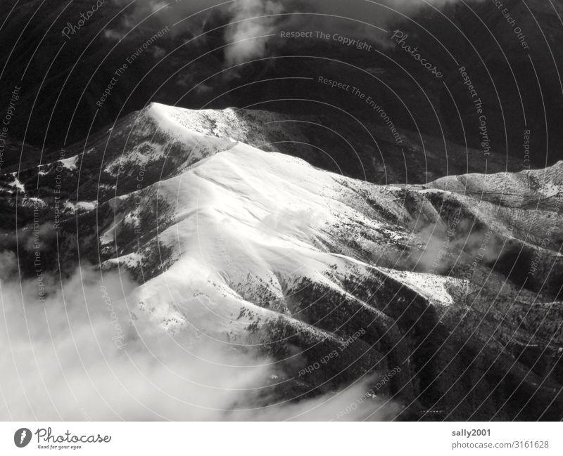 weiße Gipfel... Schneebedeckte Gipfel Berge u. Gebirge Pyrenäen Winter Schwarzweißfoto Flugzeugausblick Hochgebirge Einsamkeit Grate Baumgrenze Natur