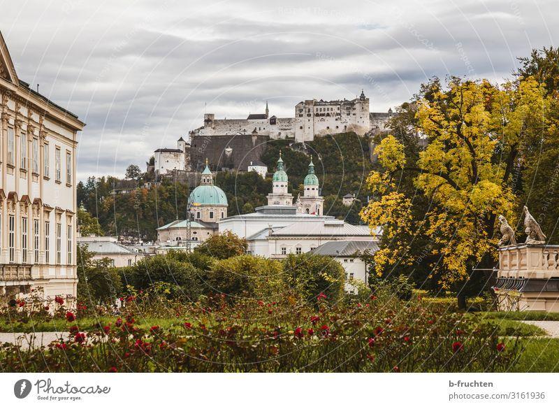 Salzburg Stadtansicht Tourismus Wolken Herbst Baum Sträucher Rose Garten Park Altstadt Kirche Dom Burg oder Schloss Bauwerk Gebäude Architektur alt authentisch