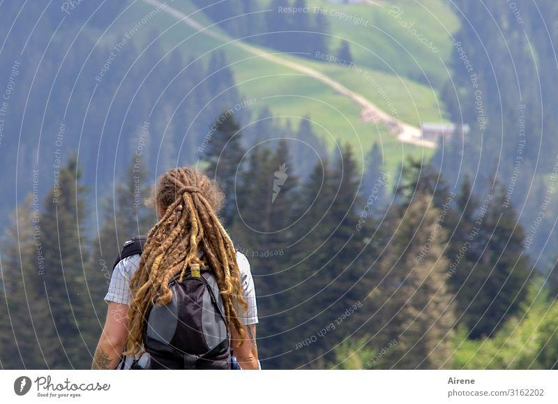 da drüben geht's weiter | AST6 Inntal Ausflug Berge u. Gebirge wandern Frau Erwachsene Oberkörper 1 Mensch 30-45 Jahre Landschaft Schönes Wetter Wald Alpen Alm