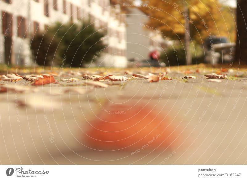 Herbstblätter liegen auf einem Weg. Verschwommener Baum Busch, Haus und Passant im Hintergrund. Wohngegend Unschärfe Blatt gelb orange Fußweg PKW parken
