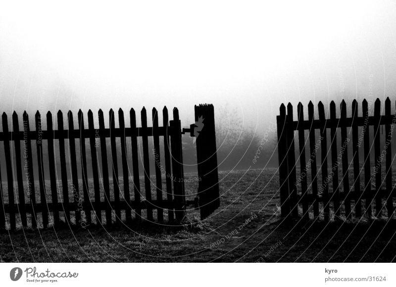 dark garden Zaun dunkel Holz Gras grau Muster Wiese Angelrute Nebel Baum Grauwert kalt Holzbrett Berge u. Gebirge Garten Rasen Tor Tür tief Himmel Pfosten