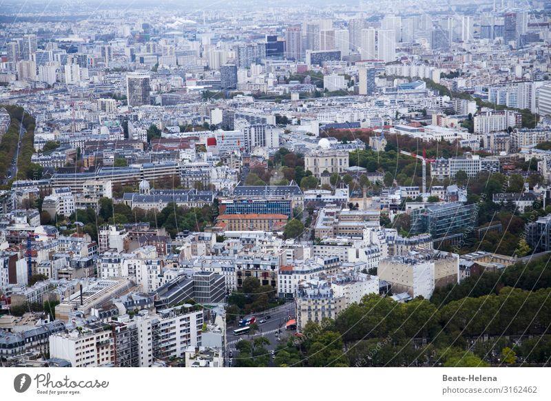 Grünes Paris Ferien & Urlaub & Reisen Pflanze Baum Wald Straße Lifestyle Umwelt außergewöhnlich Arbeit & Erwerbstätigkeit Häusliches Leben modern Hochhaus