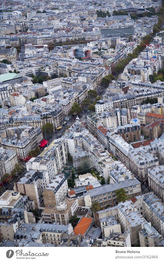 Über den Dächern von Paris 2 Baum Haus Straße Architektur Lifestyle Umwelt Bewegung Arbeit & Erwerbstätigkeit Häusliches Leben Kommunizieren Hochhaus