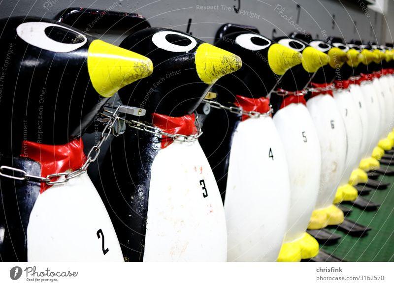 Eissporthalle Pinguin Fahrhilfe Fitness Freizeit & Hobby Eisstadion eissport Winter Winterurlaub Sport Wintersport Schlittschuhlaufen eissporthalle
