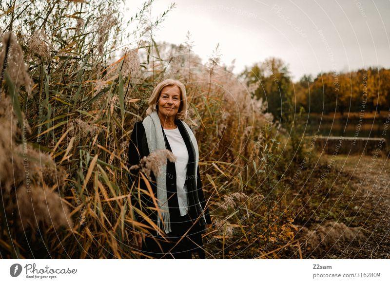 Rente ist schön elegant Stil Frau Erwachsene Weiblicher Senior 60 und älter Natur Landschaft Herbst Schilfrohr Seeufer Mode Mantel Schal blond Erholung Lächeln