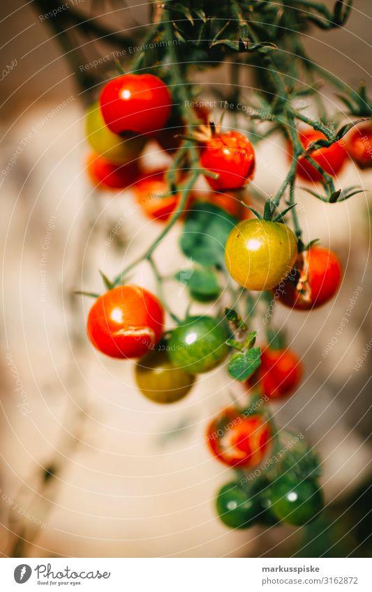 frische bio Tomaten Lebensmittel Gemüse tomatenstrauch Strauchtomate Ernährung Bioprodukte Vegetarische Ernährung Diät Fasten Slowfood Fingerfood Gesundheit