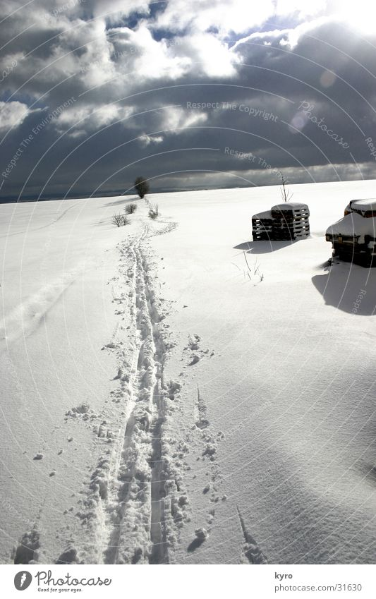 spuren im schnee Himmel weiß Baum Sonne Wolken dunkel kalt Schnee Holz Fuß Eis Schuhe hell Spuren Flocke Paletten