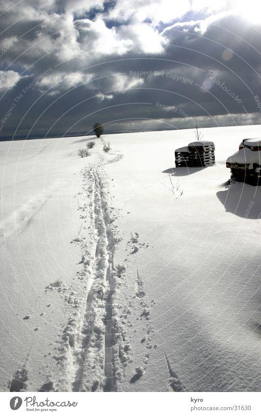 spuren im schnee weiß Schuhe Paletten Holz Baum kalt Wolken Flocke dunkel Schnee Spuren Fuß Himmel Sonne Schatten Eis hell