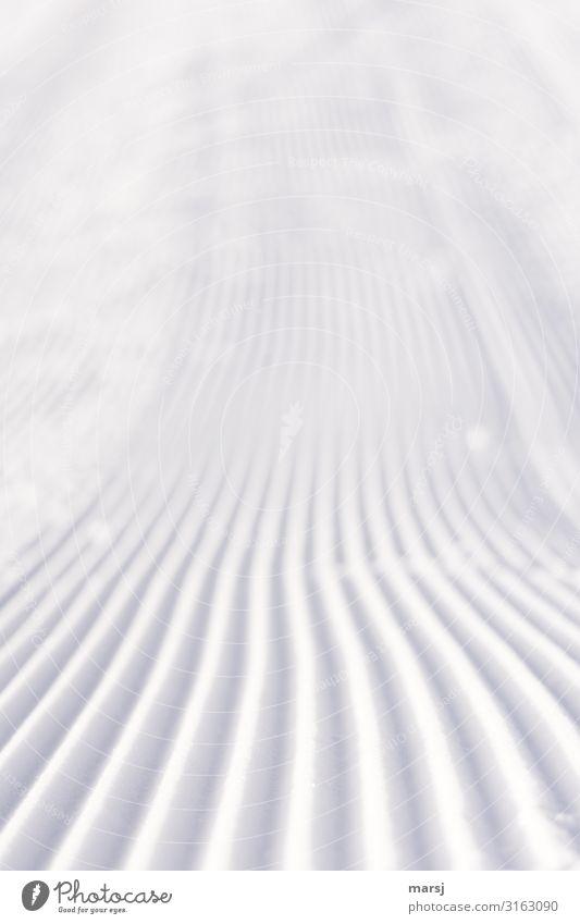 Neue Woche, frisch und unberührt Skipiste Winter Schnee Furche einfach Zusammensein kalt weiß Einsamkeit rein Farbfoto Gedeckte Farben Außenaufnahme abstrakt