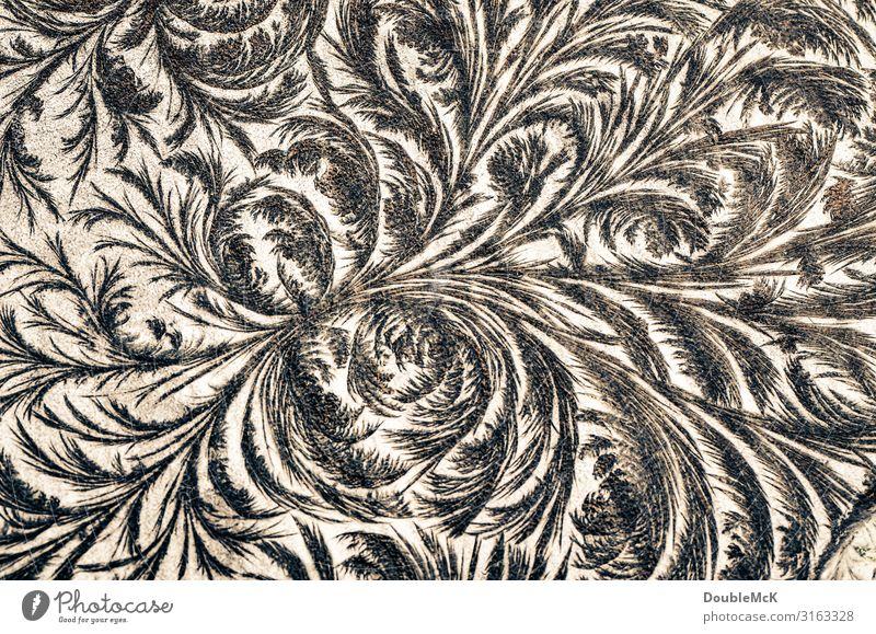 Frostige Eisblumen-Muster auf Tafel entstanden durch Wasser und Kälte Kunst Dekoration & Verzierung Holz Ornament frieren machen zeichnen Wachstum alt