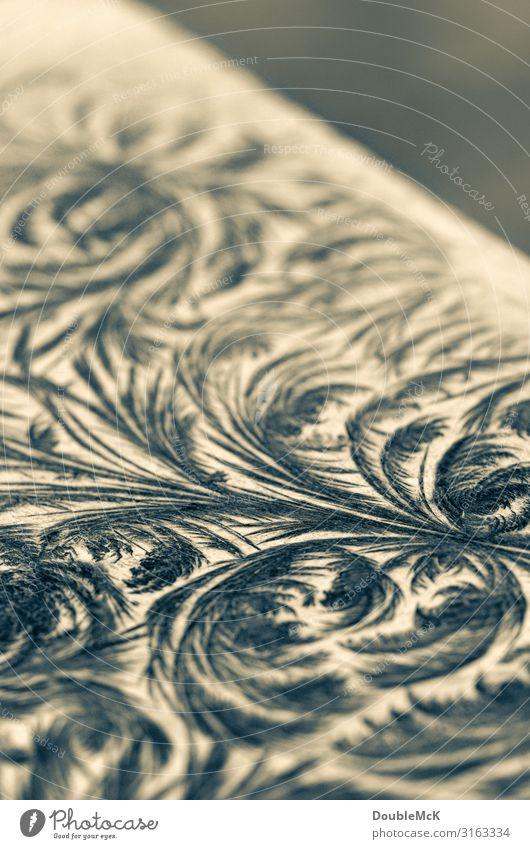 Verzierungen auf Tafel entstanden durch Wasser und Kälte Kunst Dekoration & Verzierung Holz Ornament frieren machen zeichnen Wachstum alt ästhetisch