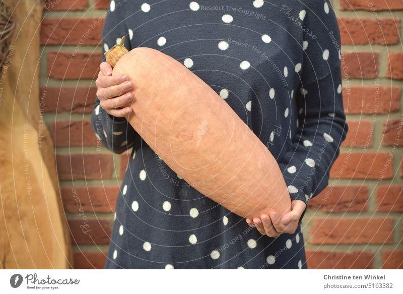junge Frau im blauen Pullover steht vor einer Klinkerwand und hält einen Speisekürbis in den Händen Lebensmittel Gemüse Kürbiszeit Jumbo Pink Banana Ernährung
