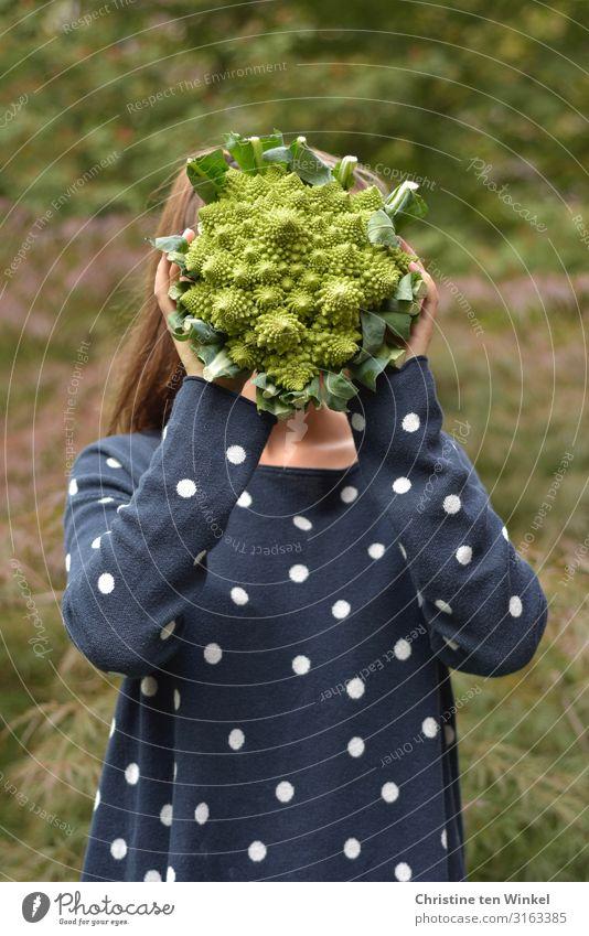 junge Frau im blauen Pullover hält einen Romanesco vor ihr Gesicht Lebensmittel Gemüse Ernährung Bioprodukte Vegetarische Ernährung Diät Mensch feminin
