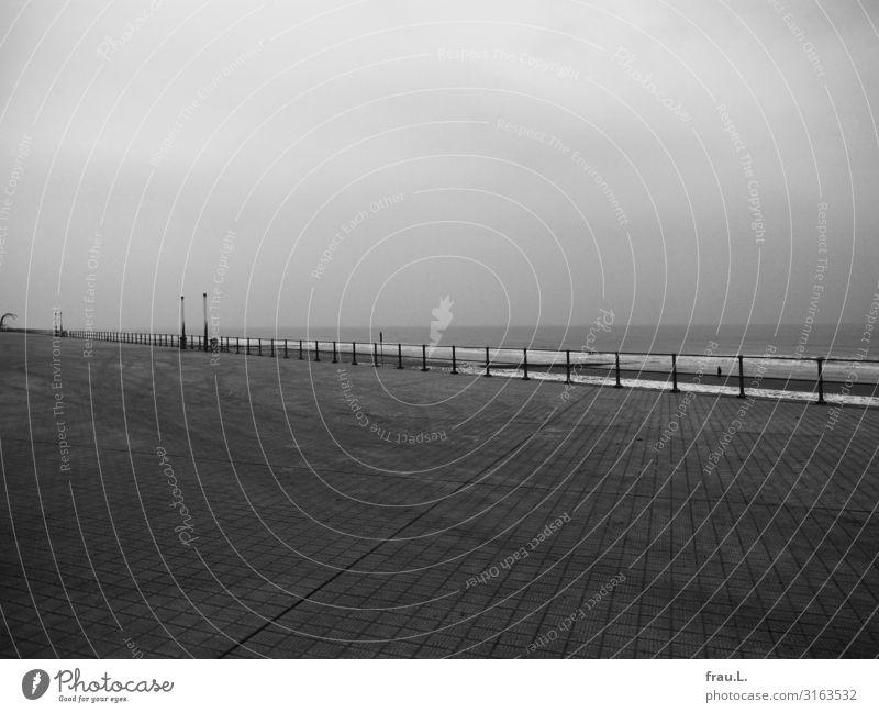 Het verdriet van Belgie Ferien & Urlaub & Reisen Stadt Meer Einsamkeit Winter Strand Traurigkeit Ausflug modern Wellen trist Städtereise Denkmal Zaun maritim
