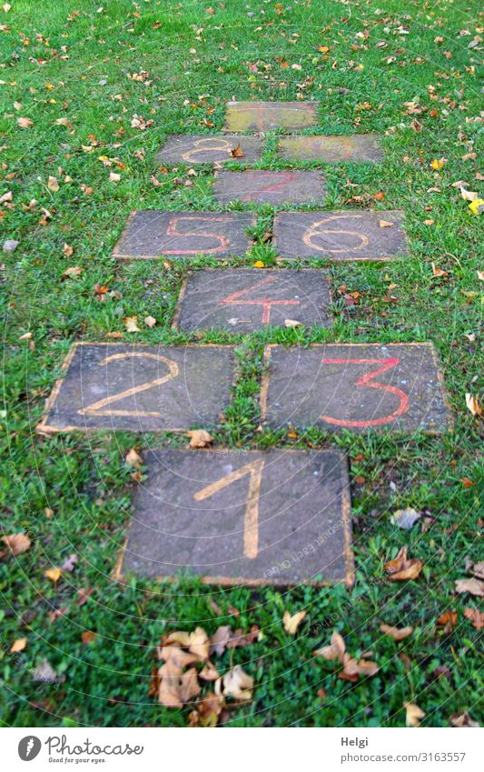 Steinplatten mit aufgemalten Zahlen, Hüpfspiel für Kinder auf einer Wiese Umwelt Natur Pflanze Gras Blatt Spielen Spielfeld Ziffern & Zahlen außergewöhnlich